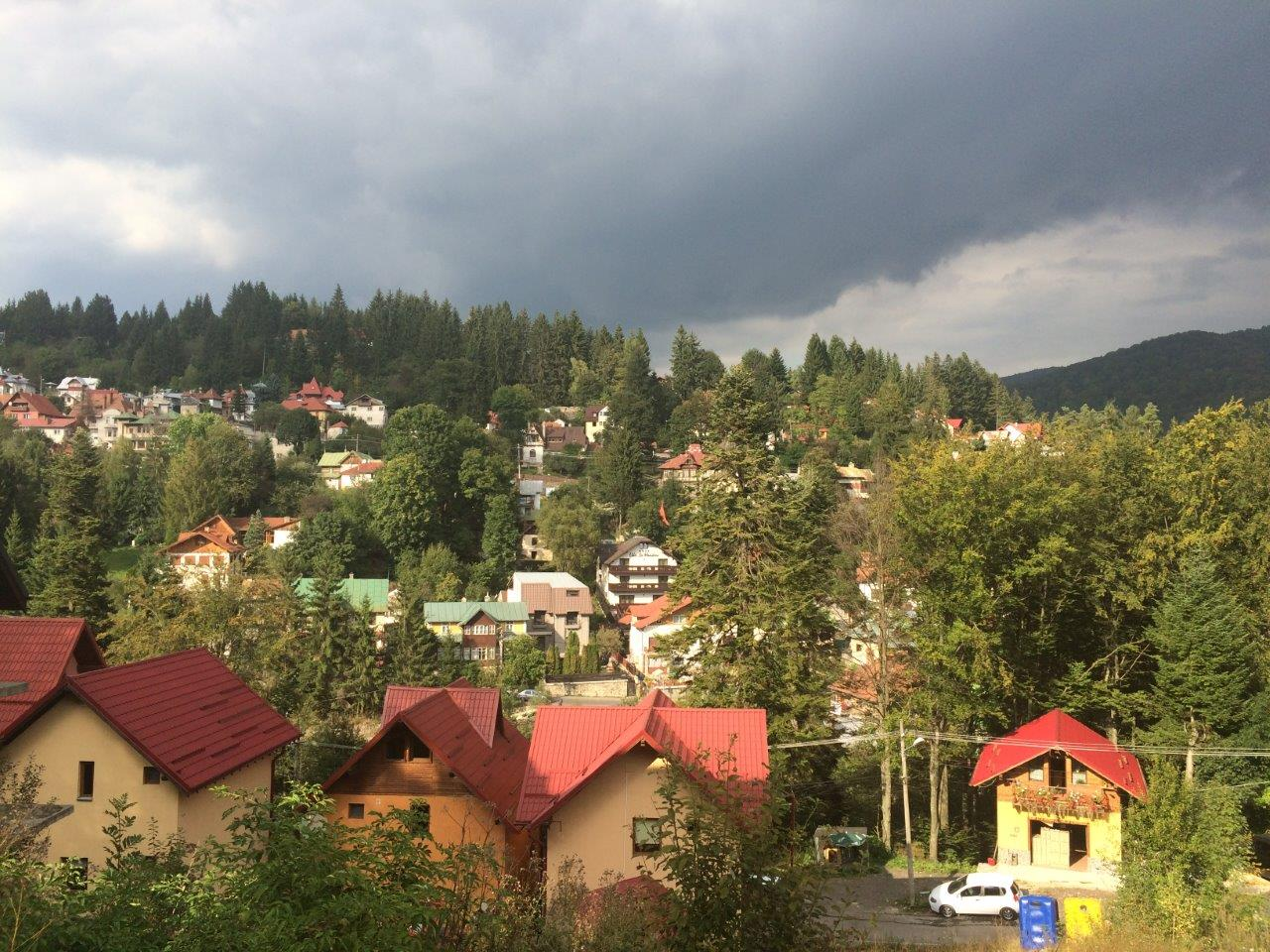 Red roofs of Sinaia from above