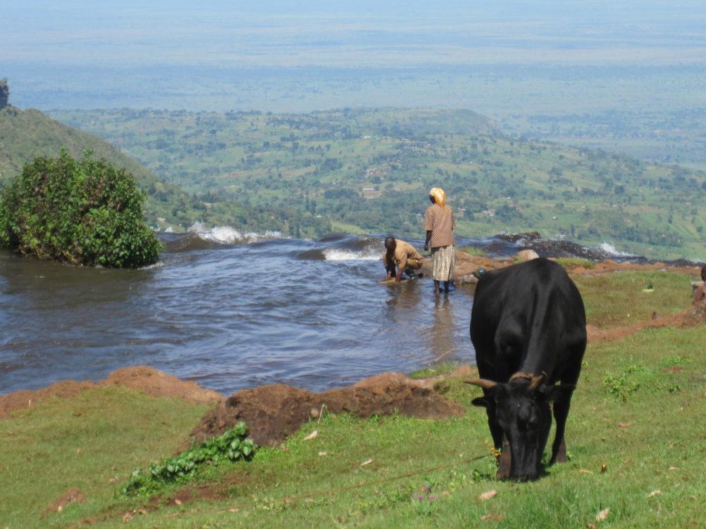 Family farm in cheap travel destination Malawi
