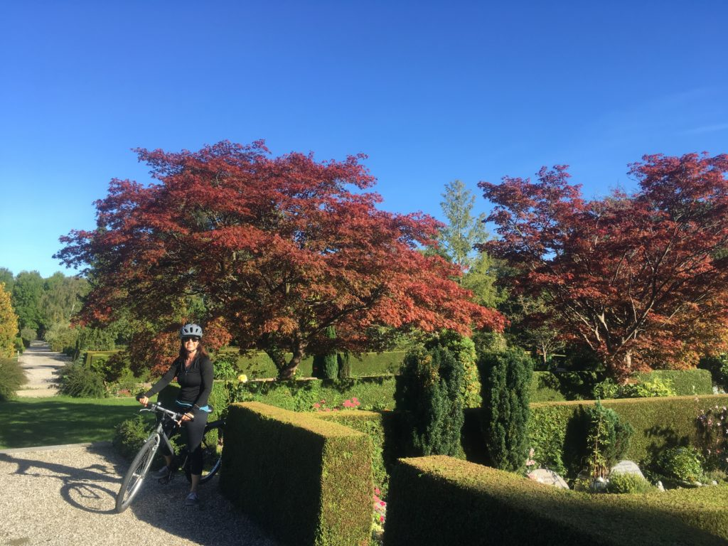 Woman riding a bicycle in Bispegjerg Cemetery in Copenhagen