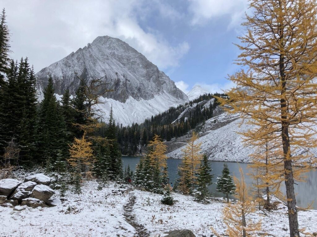 Lake with snow covered trees and mountain