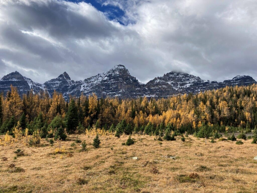 Larch Valley hike in Banff National Park