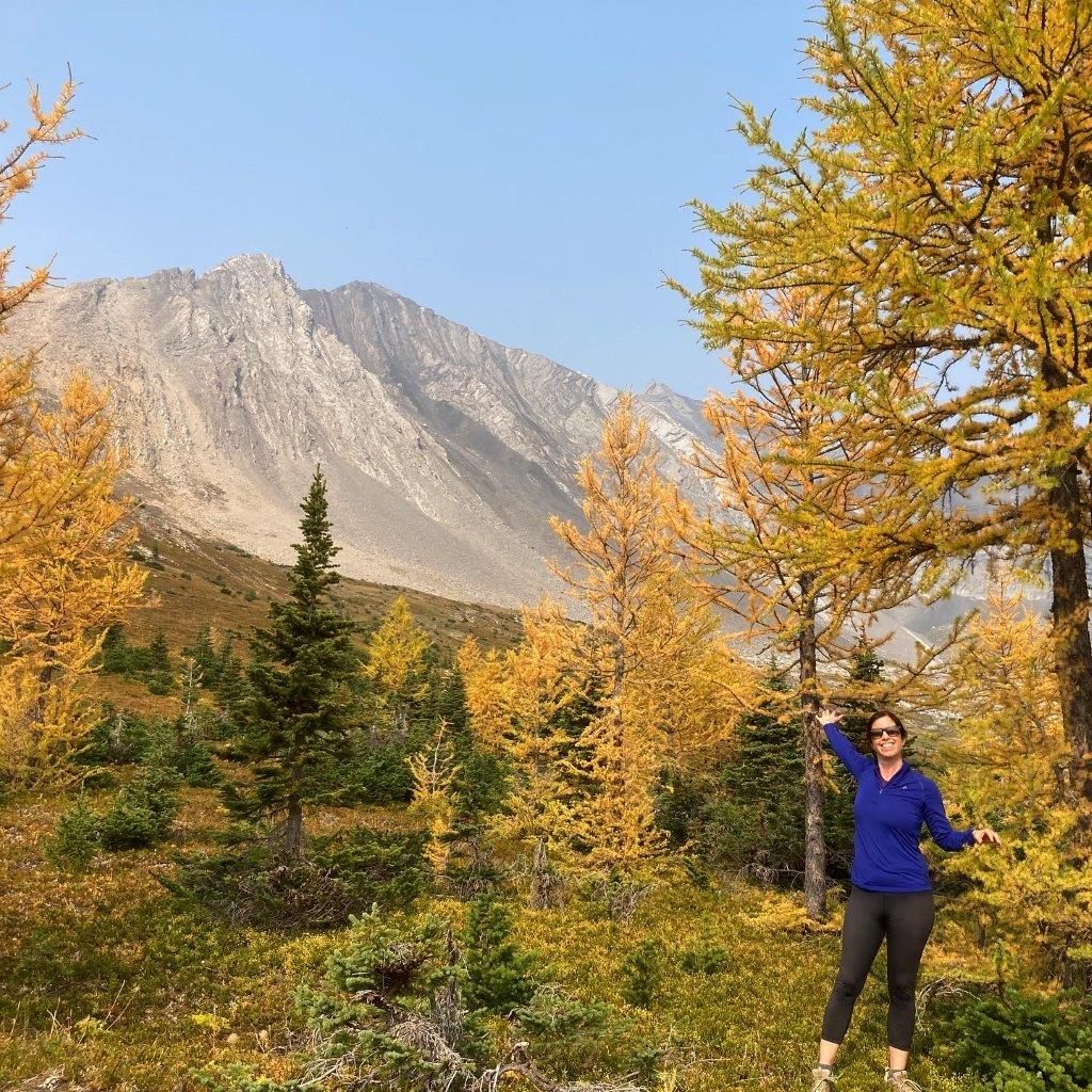 Woman in larch trees on the Ptarmigan Cirque hike in Kananaskis Country