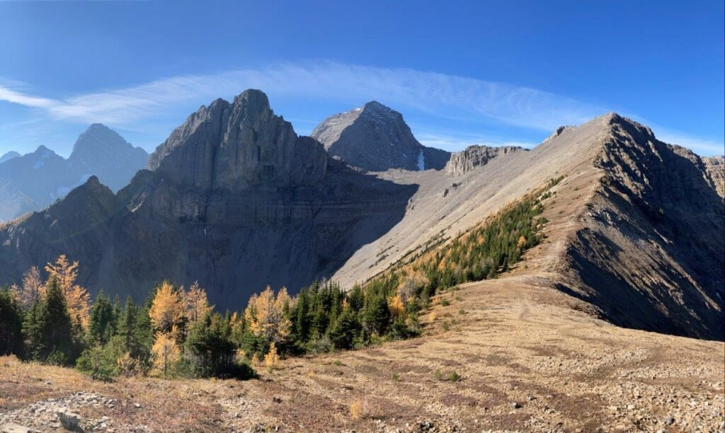 Mountains and larch trees clinging to the sides