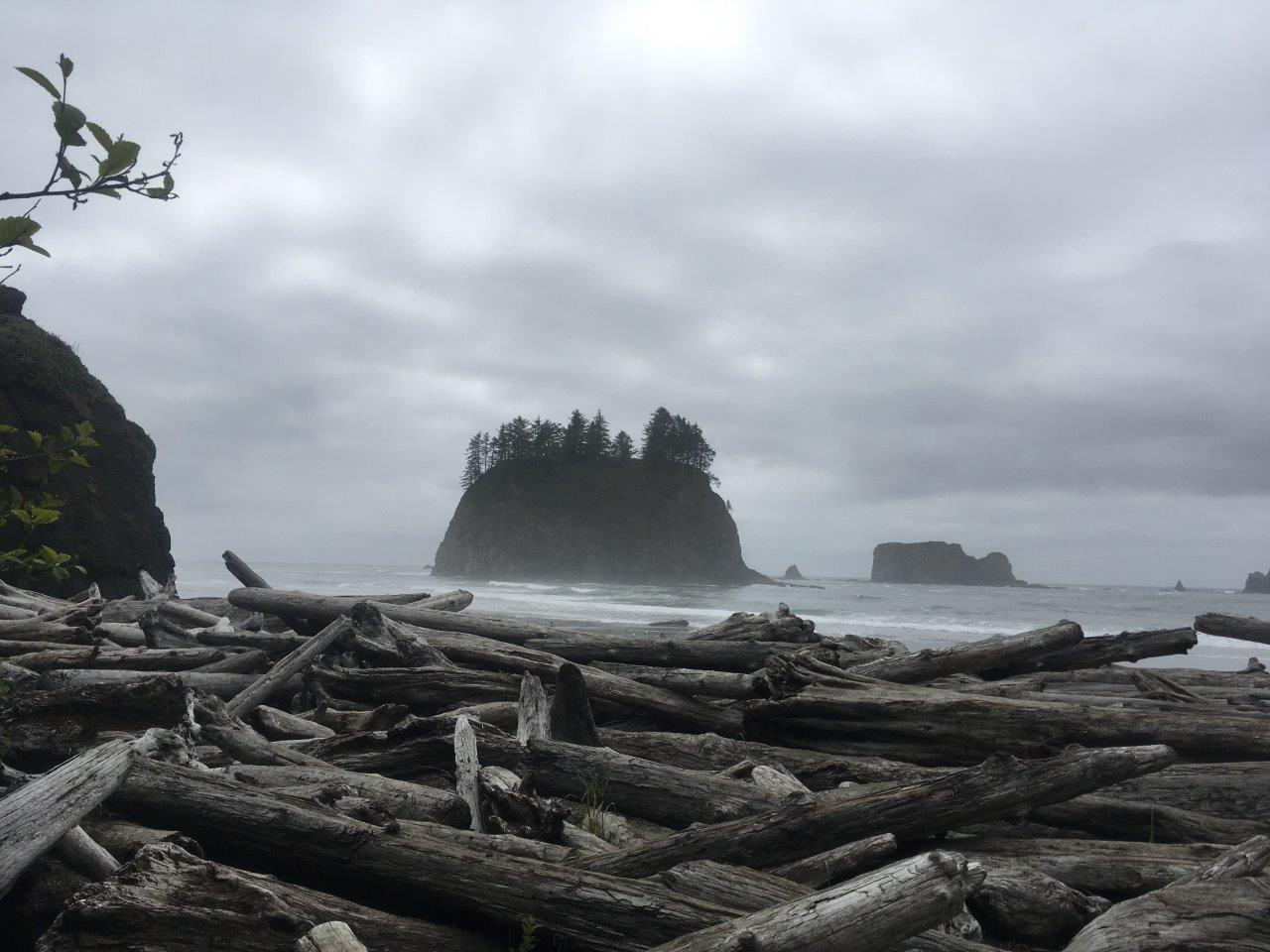 La Push coast, Washington state