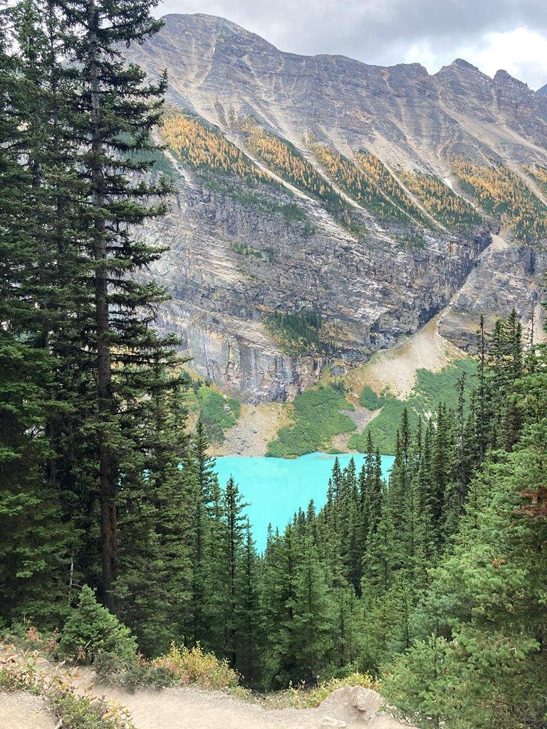 View of Lake Louise through the trees from the Lake Agnes teahouse hike