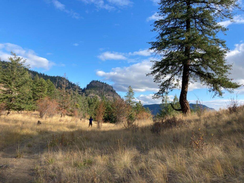 Paul's Landing in Peachland British Columbia