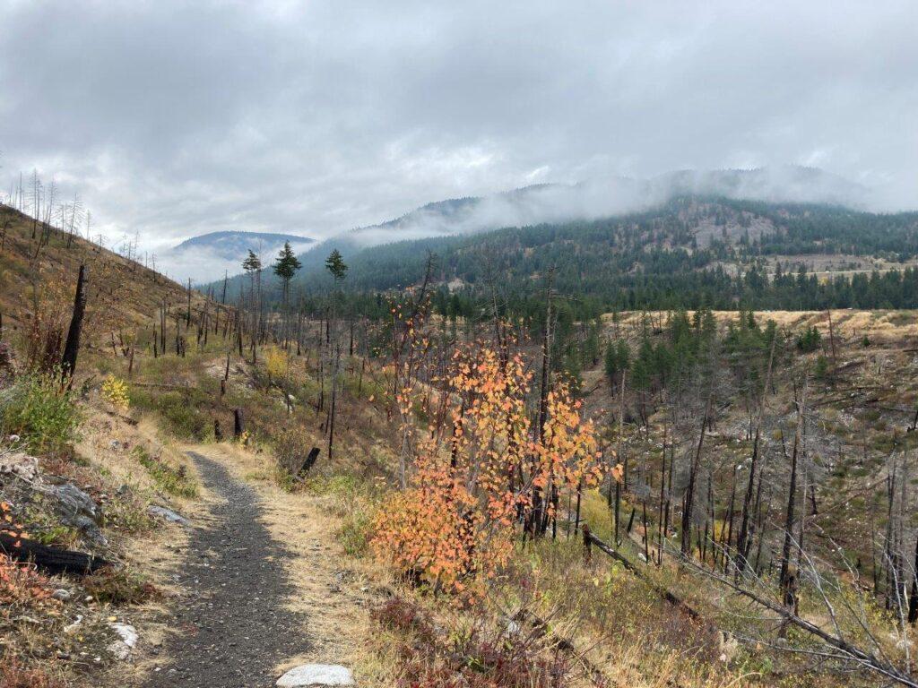 Trepanier Creek in Peachland British Columbia