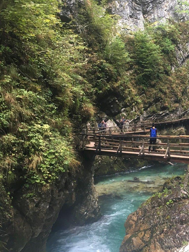The Radovna River running through the Vintgar gorge