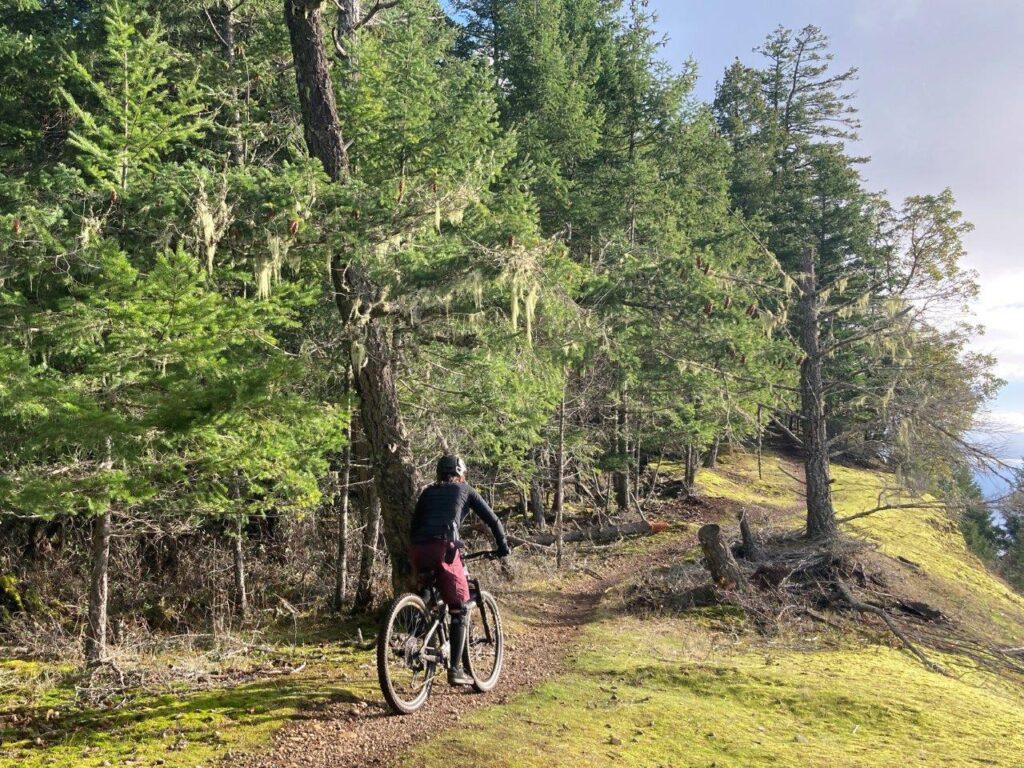 Mountain biker on one of the Hornby Island biking trails