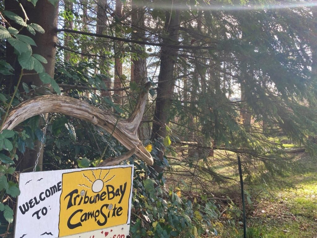 Sign for Tribune Bay Campsite with trees behind one of Hornby Island Campground