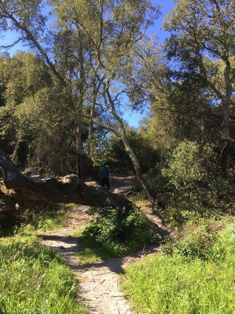 Biking and hiking trail near Vila Nova de Milfontes Portugal