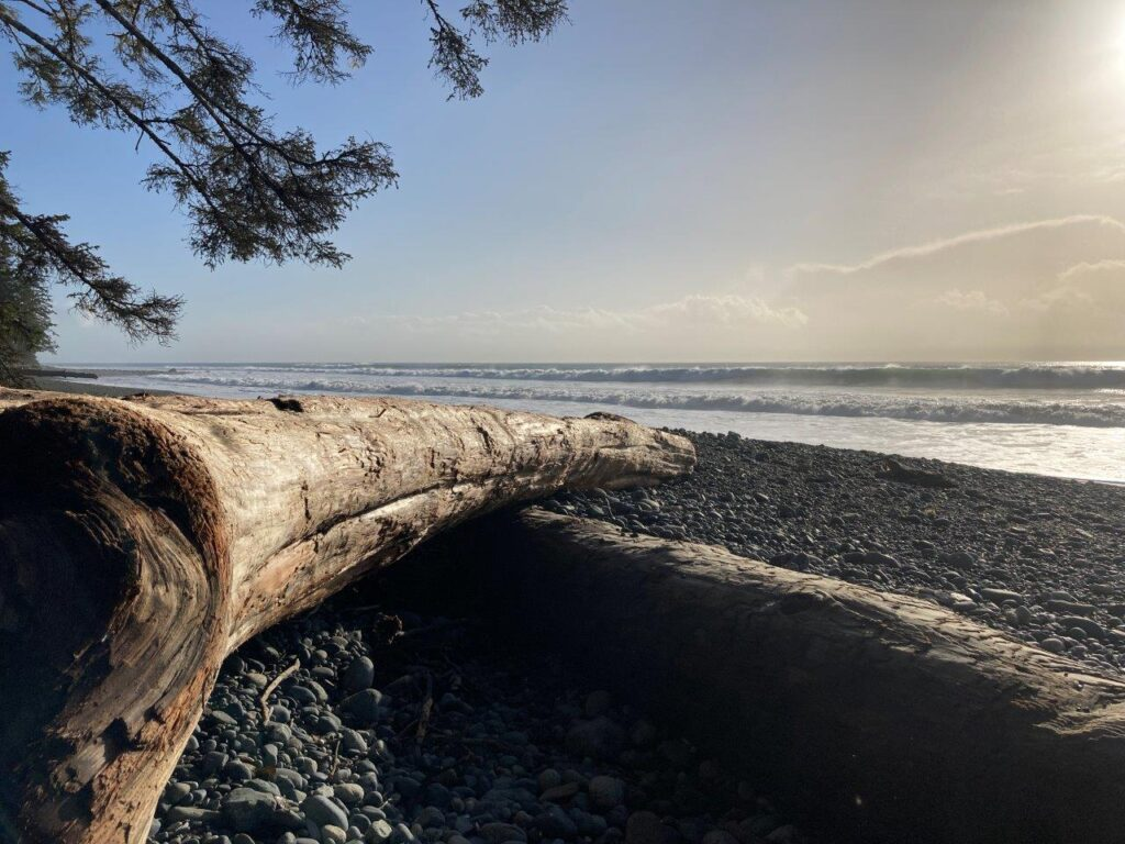 Driftwood on rocky China Beach BC with the sun starting to set