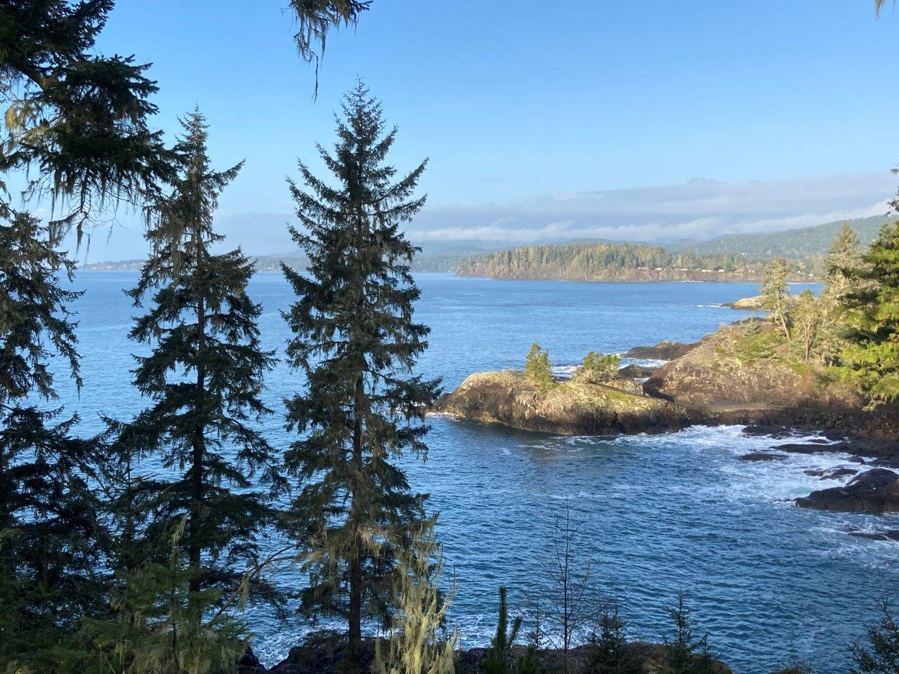 Trees in front of the ocean and rocky coastline in the East Sooke Park