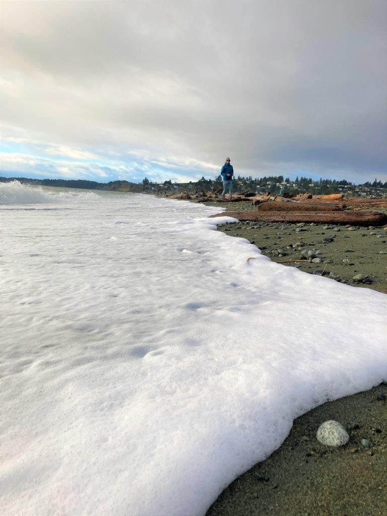 Man walking on Esquimalt Lagoon beach with driftwood and a foamy wave coming in