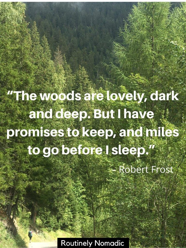 Woman in the distance walking on path with green forest and a in the woods quotes on top