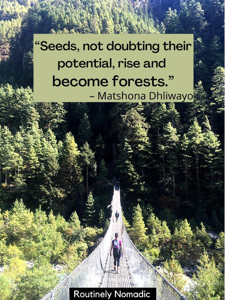 Picture of woman walking on suspension bridge towards dense forest with a inspirational forest quotes on top