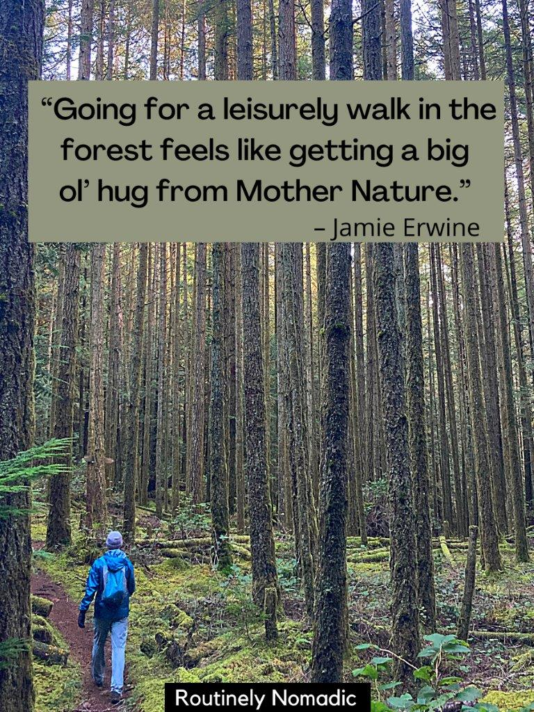 Man walking on trail beside tall skinny trees with a nature forest quotes on top