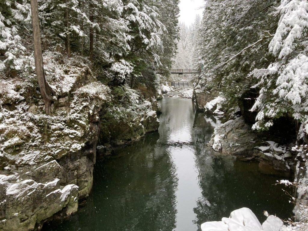 Capilano Canyon in winter