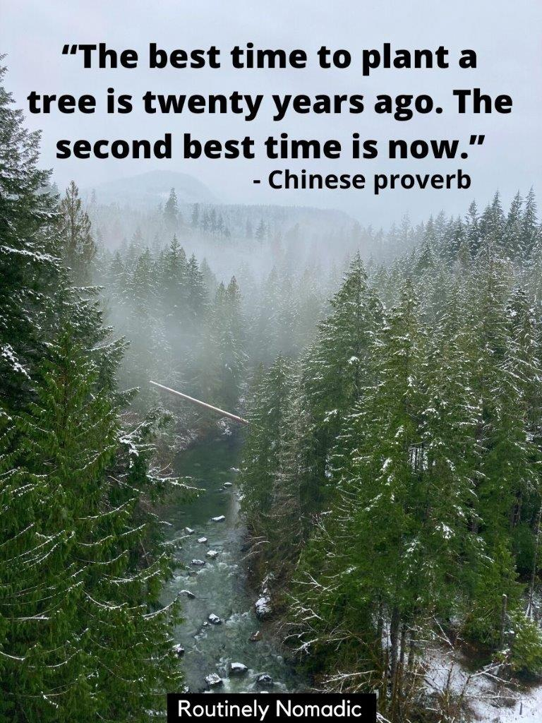 View from above of a river and pine trees with a caption for planting trees - the best time to plant a tree is twenty years ago. The second best time is now tree caption on top