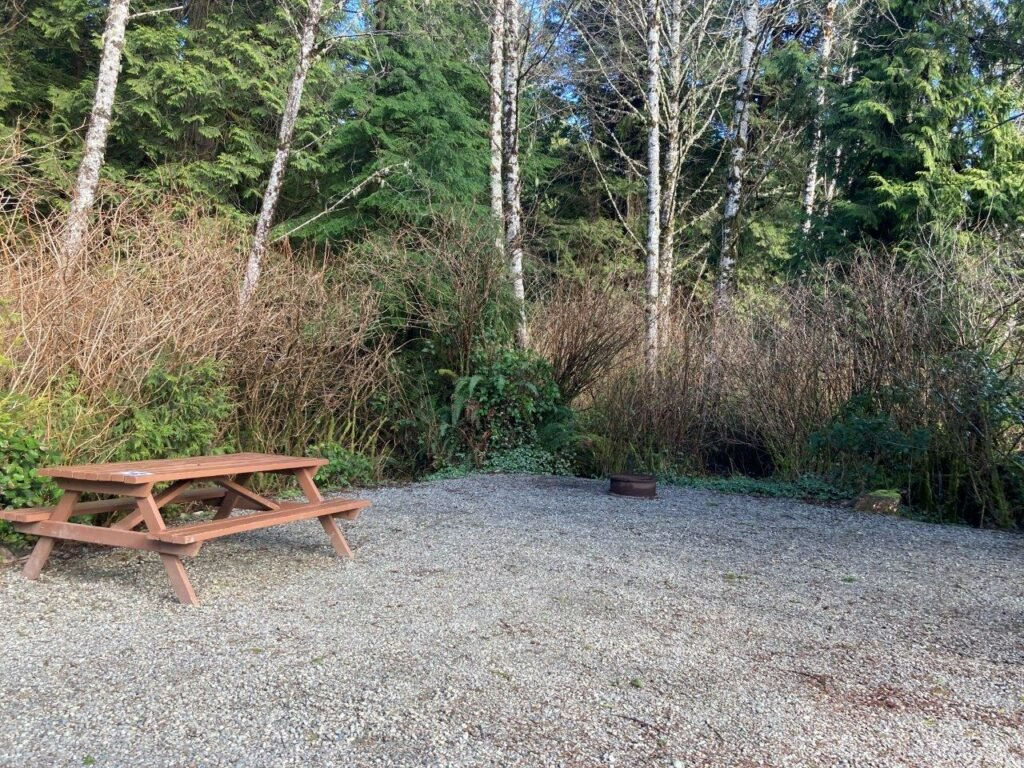 Empty RV Tofino camping site with a picnic table and fire pit at Crystal Cove
