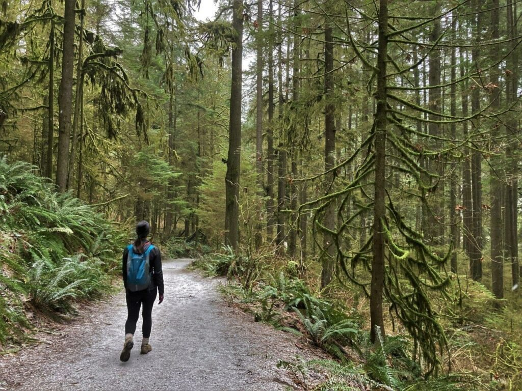 Woman walking down trail with moss covered trees on a easy hike near North Vancouver
