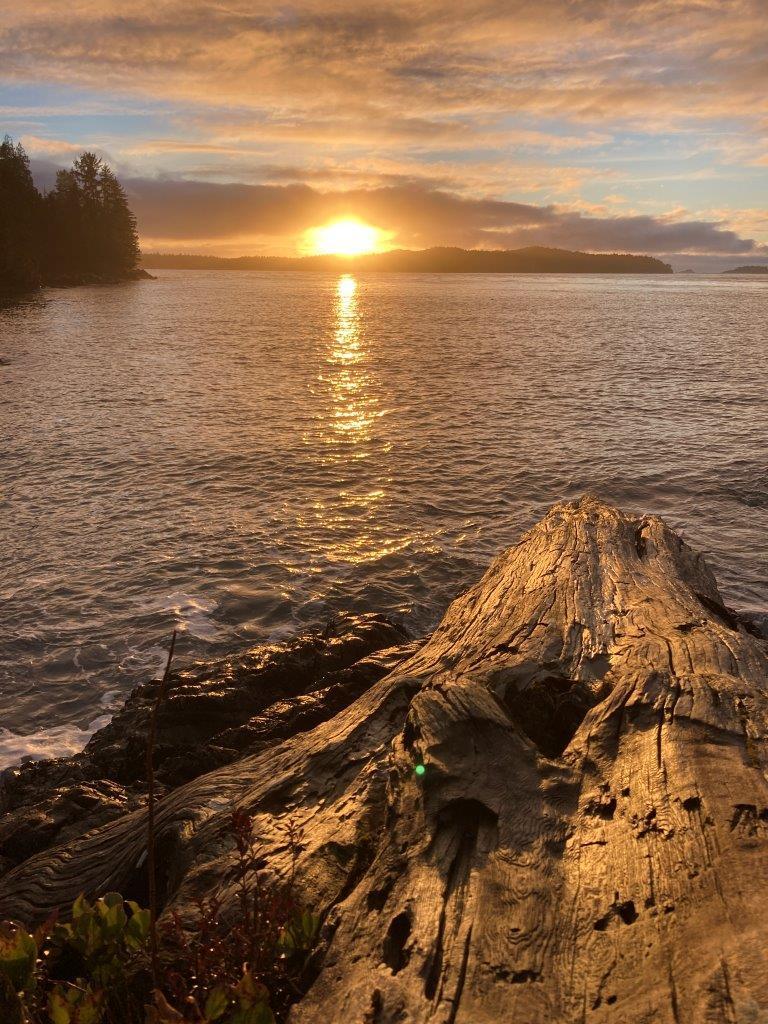 Tofino BC sunset