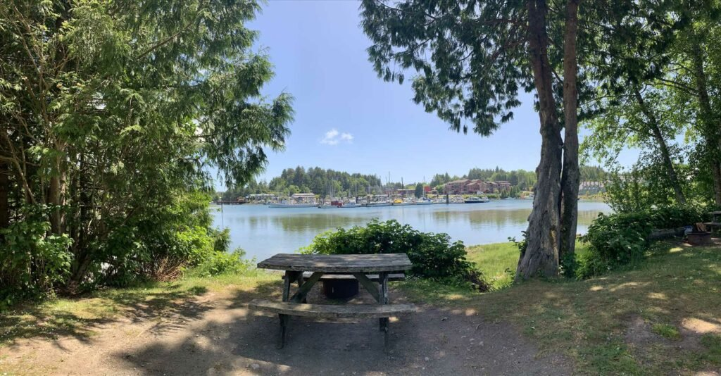 Picnic table with trees on both sides and water behind at Ucluelet Campgrounds