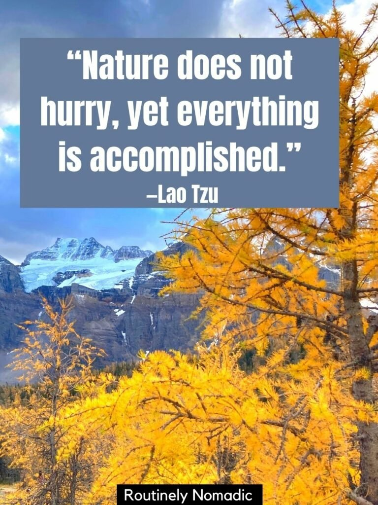 A golden larch tree in front of a snow covered mountain with a nature quote short that reads nature does not hurry, yet everthing is accomplished