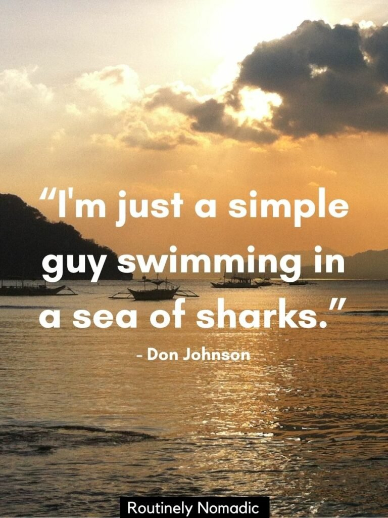 Sunset over the sea with boats floating and a funny sea quotes that reads I'm just a simple guy swimming in a sea of sharks