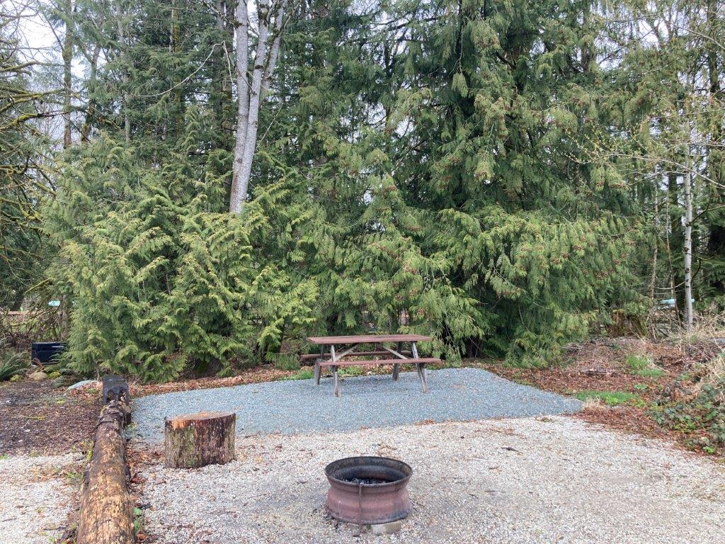 Empty campsite at the Mamquam River Campground - one of the best Squamish campground options