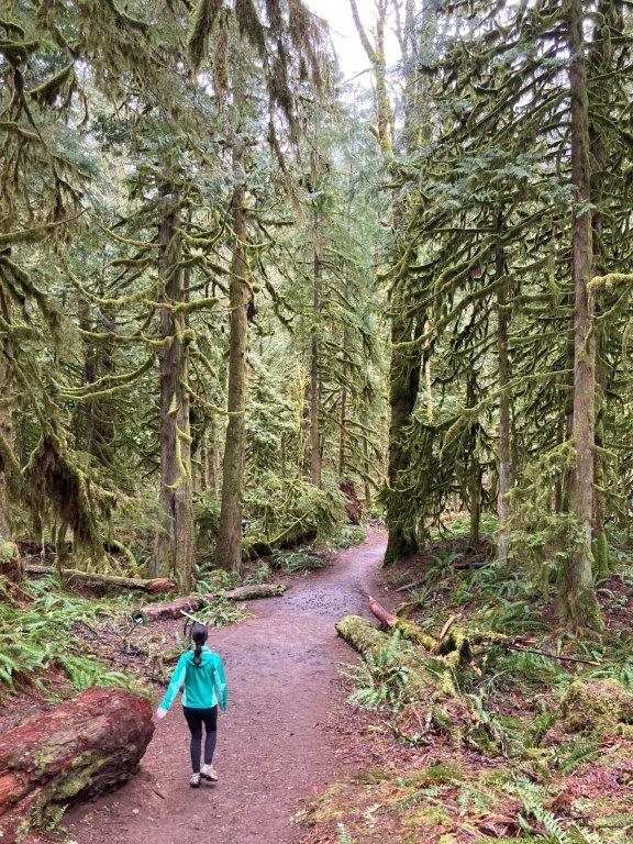 Woman walking on the tea pot hill hike trail with tall mossy trees on both sides
