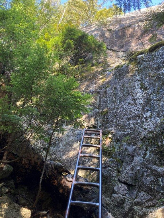 Metal ladder affixed to granite stone on the Chief hike in Squamish