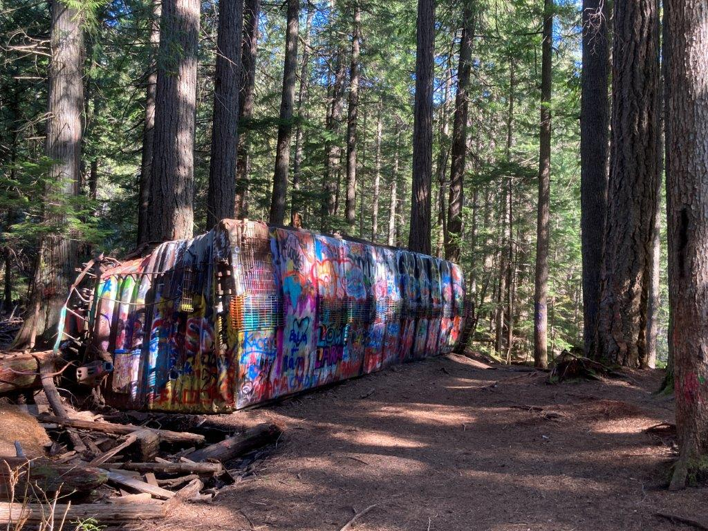 A graffitied abandoned train car in the woods on the Whistler train wreck hike near Squamish
