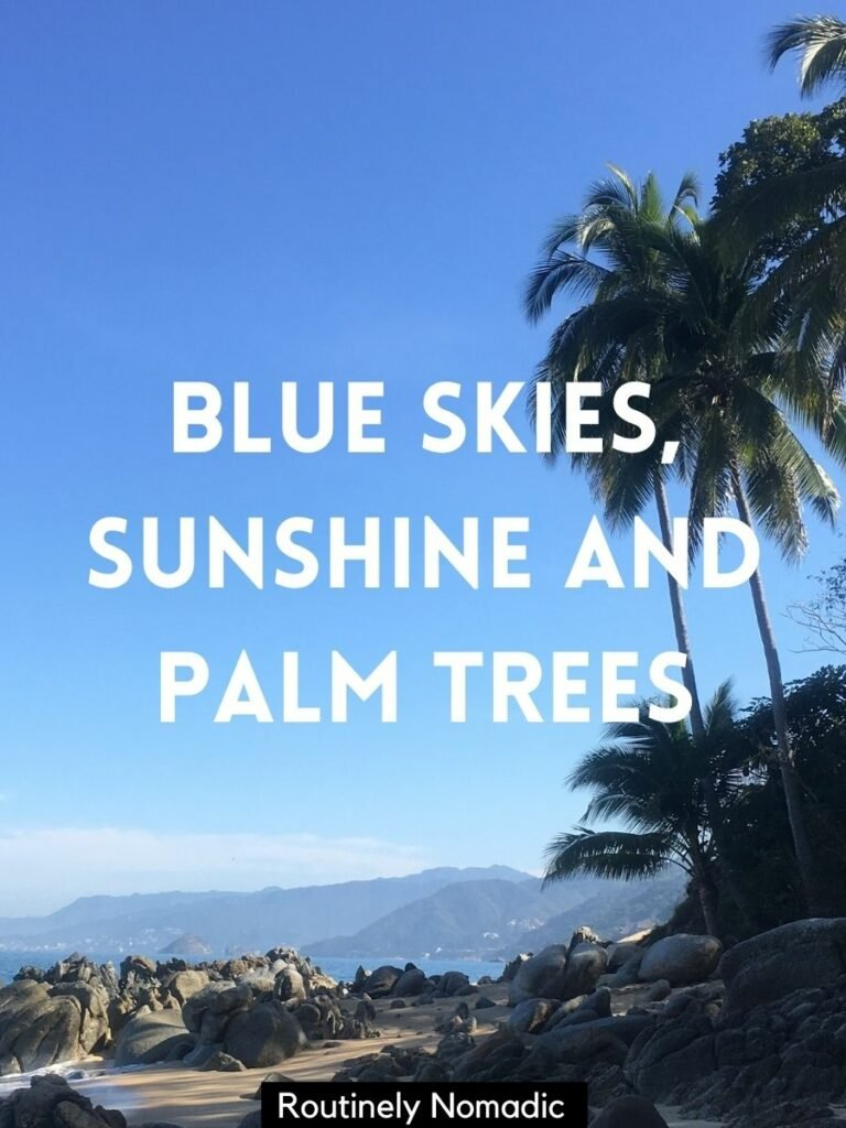 A rocky beach with palm trees and a blue skies and palm trees quotes and captions that reads: blue skies, sunshine and palm trees