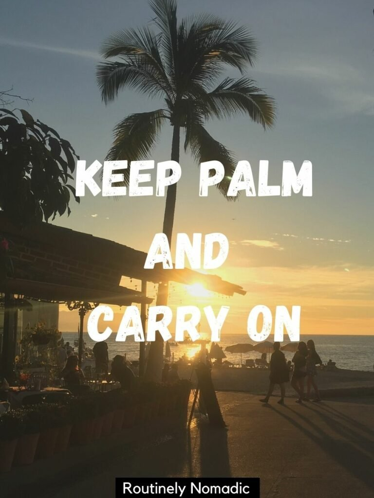Walkway by ocean at sunset with a palm tree silhouetted and a funny palm tree captions that reads Keep palm and carry on