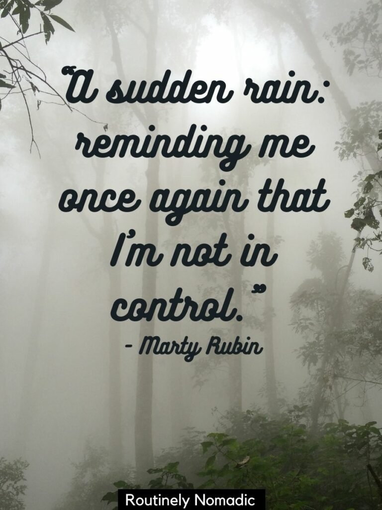 Rainy forest with the sun peering through and a funny rain quotes on top
