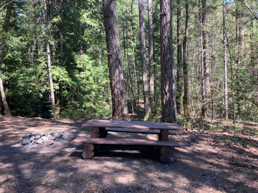 Picnic table in the trees at Owl Creek camping one of Pemberton Camping options