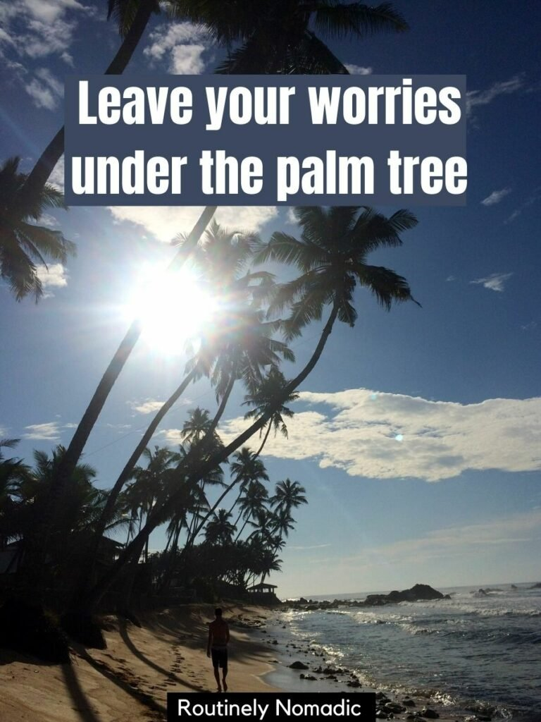 man walking on beach with palm trees towering overhead with a palm tree instagram captions that reads: leave your worries under the palm tree