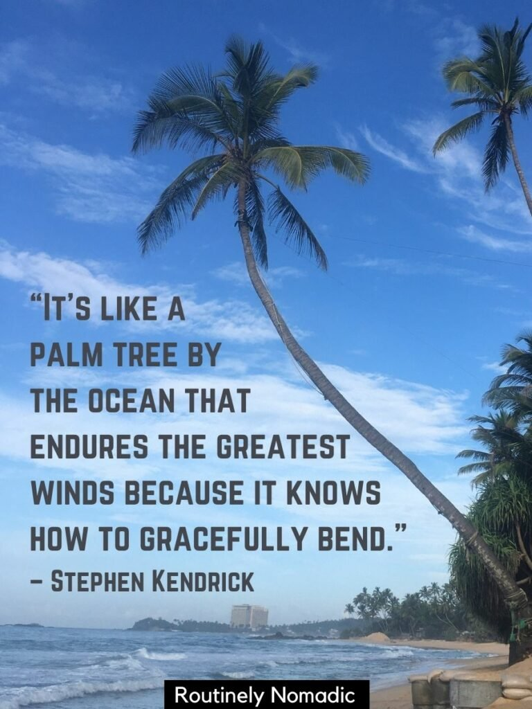 Beach with a palm tree and a palm tree strength quotes from Stephen Kendrick on top