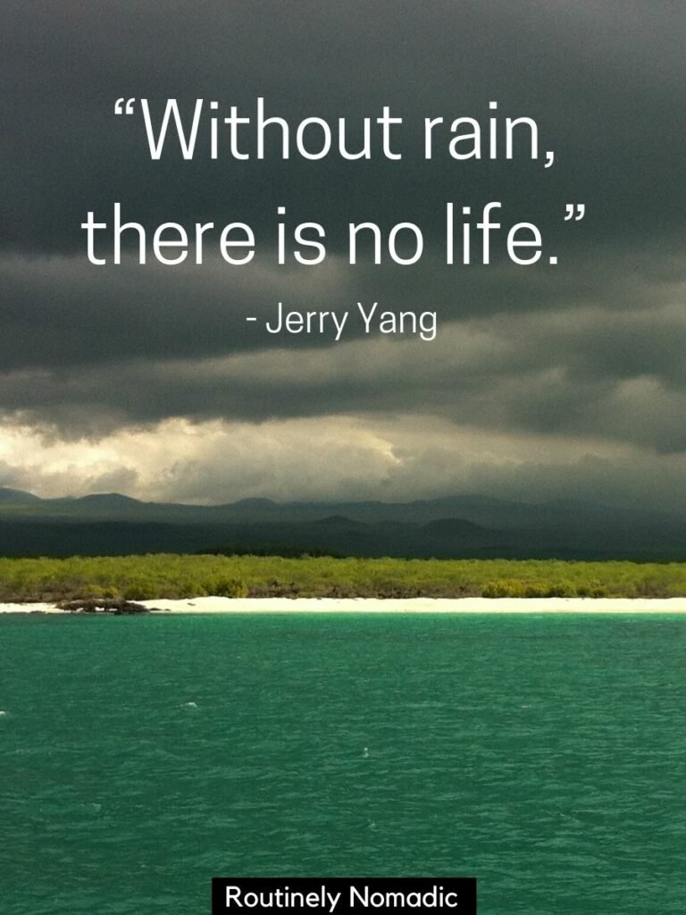 Ocean, beach, trees and dark rain clouds and a rain quotes that says without rain, there is no life