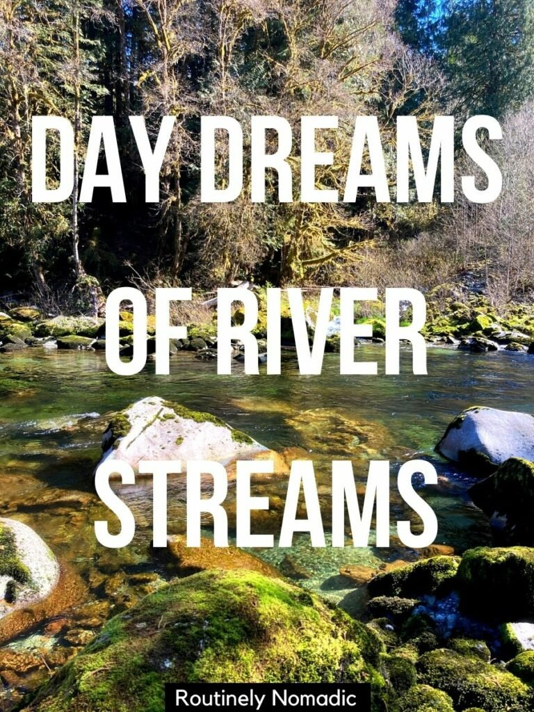 River with moss covered stone and green water and a river captions for Instagram that reads day dreams of river streams
