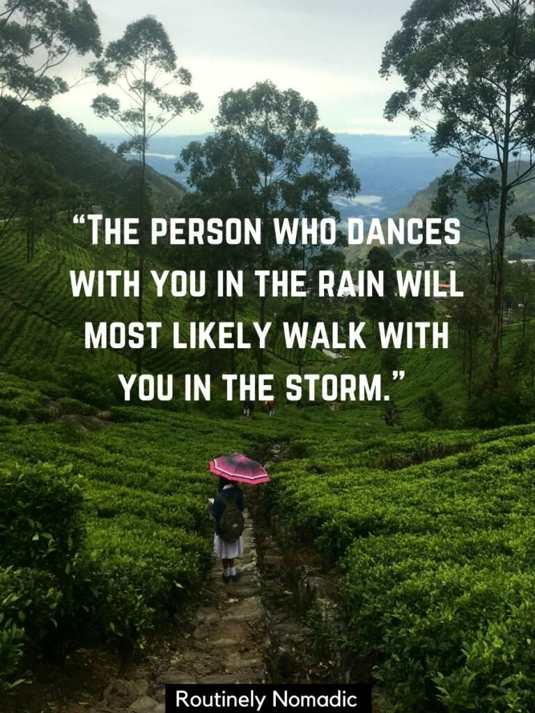 Someone walking in the tea fields with an umbrella and a romantic rain quotes on top
