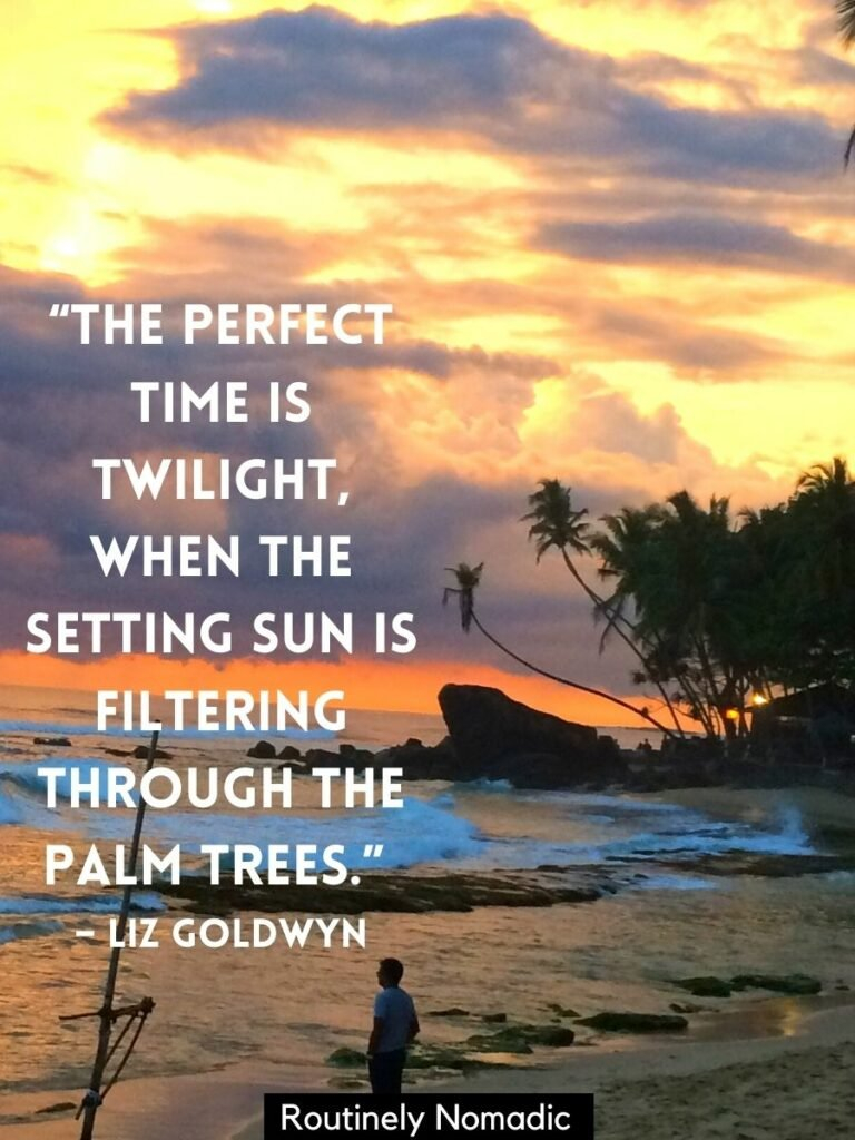man looking at ocean at sunset with palm trees in background and a sunsets and palm trees quotes by Liz Goldwyn