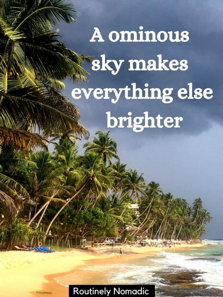 Beach with palm trees and dark clouds with a sky captions that reads An ominous sky makes everything else brighter
