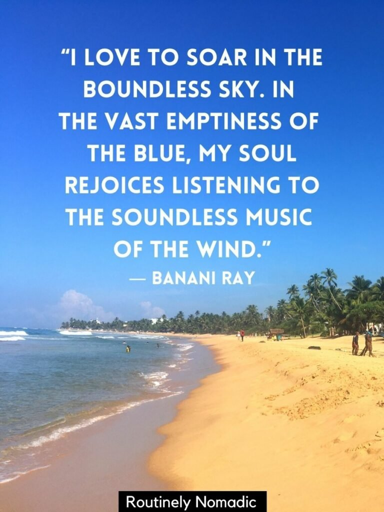 A beach backed by palm trees with gentle waves and a blue skies quotes by Banani Ray