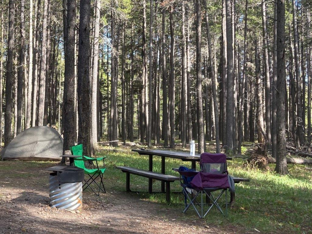 Fire pit, picnic table and tent in the trees at Cypress Hills camping Saskatchewan