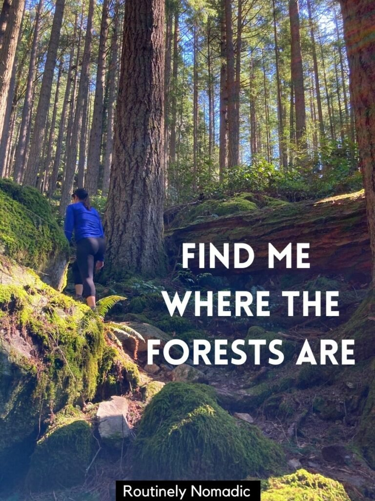 Woman hiking up a hill surrounded by tall trees with a forest captions that reads find me where the forests are