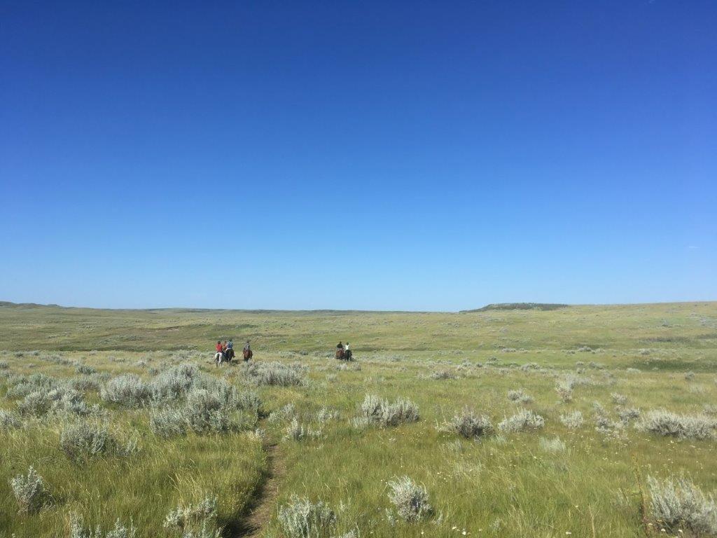 5 people horseback riding at Grasslands National Park