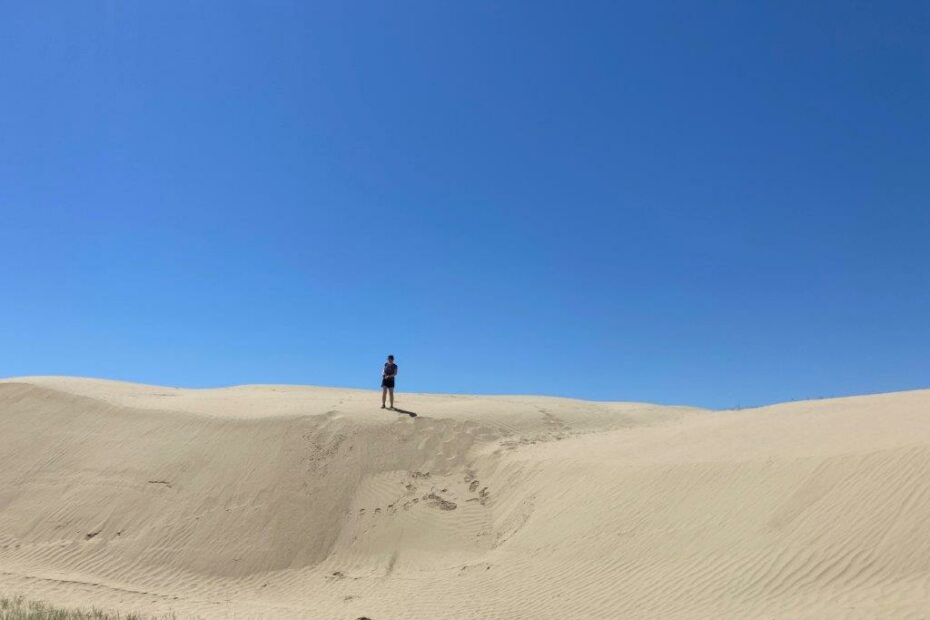 person standing on top of a sand dune at the Great sandhills Saskatchewan