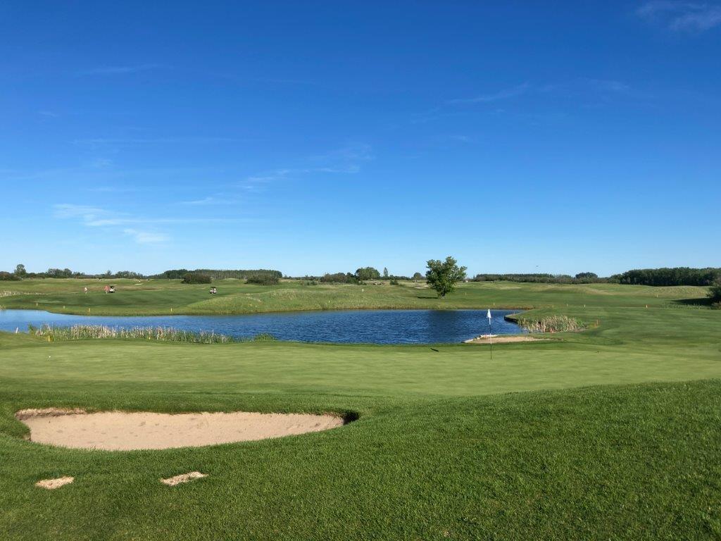 Moon Lake Golf Course - Moors #8